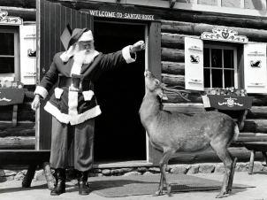 vintage-santa-deer